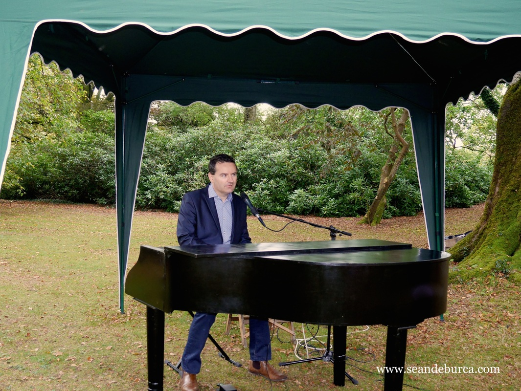 Ballyvolane house, wedding in the woods